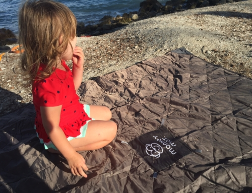 Literally make any place be your space with Monkey Mat!