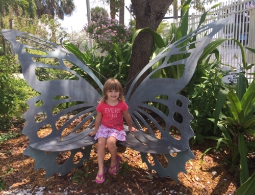 The Butterfly Estates in Fort Myers