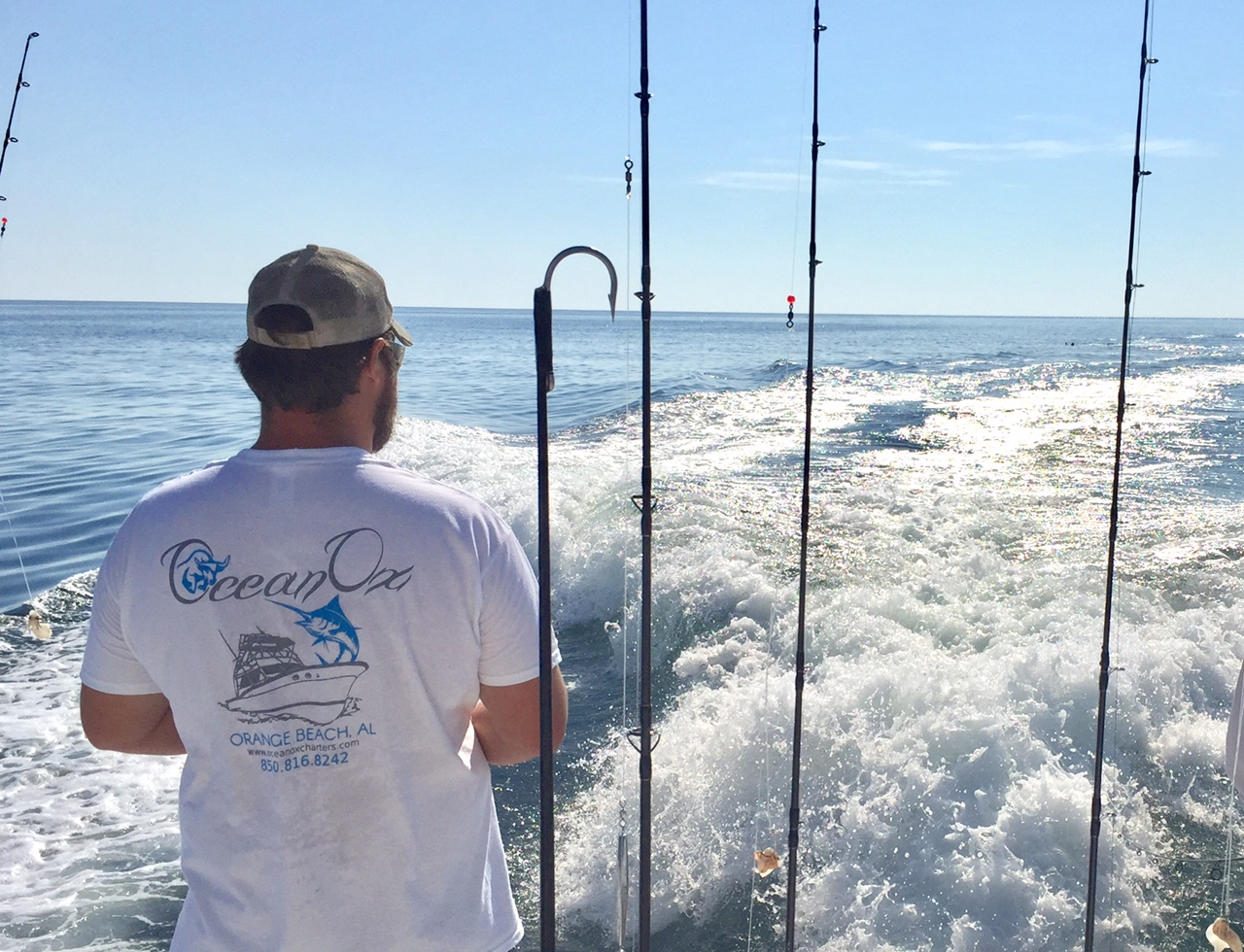 Deep sea fishing in orange beach alabama ocean ox charters for Fishing orange beach al