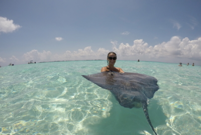 Visit Stingray City Cayman Islands   THings to do in the Grand Cayman   Swim with Stingrays   Mandy Carter travel writer   Acupful.com family travel blog   Caymans attractions   Red Sail Sports tour to Rum Point and Stingray City