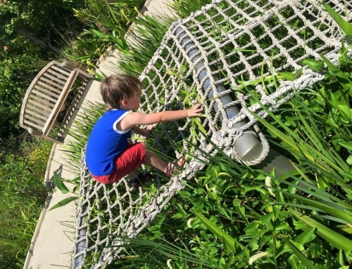 Tips for Taking Kids to Botanical Gardens + Top Florida Gardens to Visit